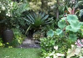 Tropical Gardening Ideas Tropical Garden Design Ideas Luxury Stunning Tropical Gardens
