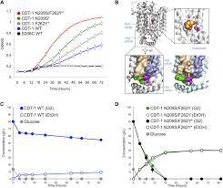 selection of chromosomal dna libraries using a multiplex crispr