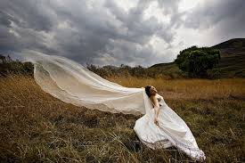 trash the dress segerius bruce photography