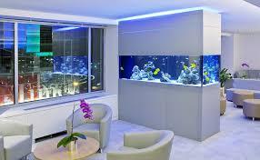Home Aquarium Decorations Aquarium Decor Ideas Make Your Home Or Office Alive And