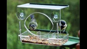 clear plastic window bird feeder window bird feeder by garden utopia youtube