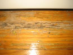 cleaning tar like substance hardwood floor hackettstown nj