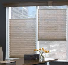 Pleated Shades For Windows Decor High Windows Inspiration Mellanie Design