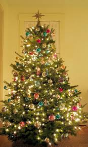 decorating inspiring decorationg on with green christmas tree