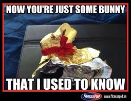 Chocolate Bunny Meme - 16 best easter fun images on pinterest easter funny memes and a