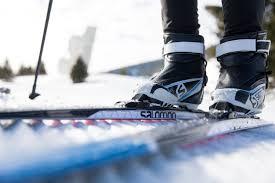 buy skating online at sport conrad