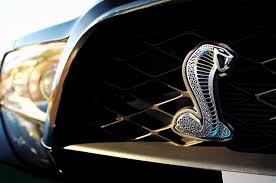 2015 Gt500 Specs 2015 Ford Mustang Gt500 Horsepower Car Autos Gallery