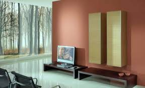 home interior painting ideas combinations home interior painting ideas combinations advice for your home