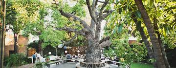 outdoor venues in los angeles happy trails catering