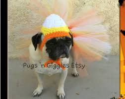 Corn Halloween Costume Halloween Thanksgiving Candy Corn Pugs Cute Dog Hats Halloween