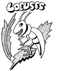 coloring pages locust coloring page pages locust coloring page