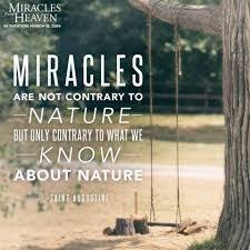 Miracle In Heaven Image Result For Quotes From Miracle From Heaven Quotes