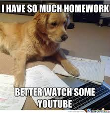 Homework Meme - 13 stages we all experience when procrastinating on homework