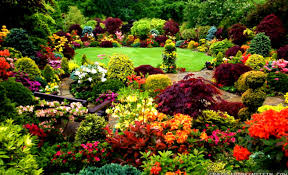 wallpaper amazing beautiful gardens with colorful flowers and