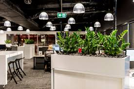 office design and office fitout ideas aspect interiors melbourne open plan office biophillia plants in office design