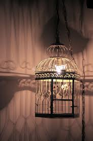 Hanging String Lights From Ceiling by 82 Best Bird Cage Lights Images On Pinterest Bird Cages
