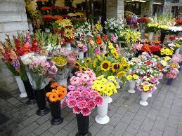 flowers shop flowers flower shop bouquet free photo on pixabay