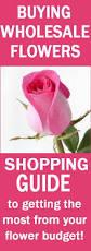 Discount Flowers Best 25 Wholesale Flowers Online Ideas On Pinterest Flowers
