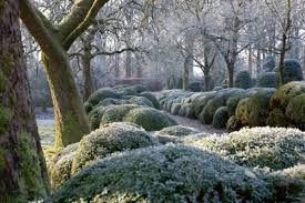 expert advice 7 tips to put your garden to bed for the winter