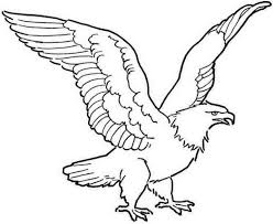 free colouring pages animal eagle for boys girls 498006 coloring