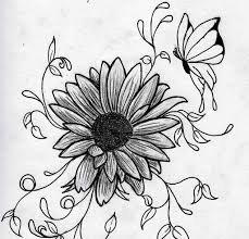 amazing drawings step by step step step pencil drawings of flowers
