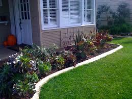 anandascapes the urban garden v6 super succulents
