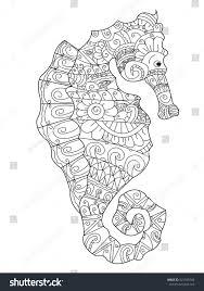 sea horse coloring book adults vector stock vector 521946766
