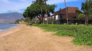 Beach House Rentals Maui - maalaea surf kihei hawaii beachfront vacation rental condos