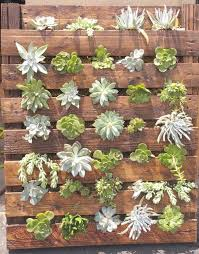 Diy Vertical Pallet Garden - vertical garden guide u2013 still a diy project from pallets u2013 fresh