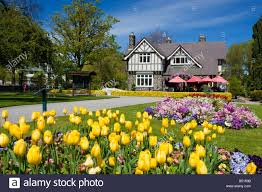 Spring Flower Garden A Scenic Photo In Christchurch New Zealand Of The Spring Flowers