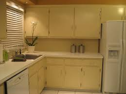 Painting Kitchen Cabinets Two Different Colors by Furniture Awesome Kitchen Cabinets Designs Painted White