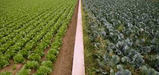 chambre agriculture avignon chambre régionale dispositif refbio journée biodiversité