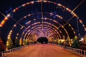 Zoo Light Houston by Austin Trail Of Lights