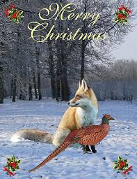 102 best christmas cards international images on pinterest