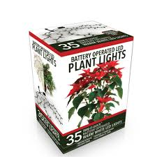battery operated christmas lights lowes shop trim it quick 35 count 10 5 ft constant warm white dome led