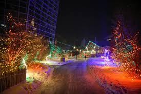 Washington Dc Zoo Lights by Experience Zoolights Top Five Holiday Traditions Calgary Zoo