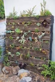 30 wood pallet wall garden great ideas u2013 modernhousemagz
