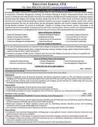 Corporate Development Resume Executive Resume Example