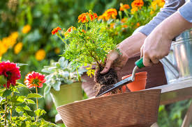 garden design garden design with landscapers insurance concklin