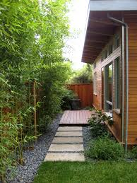 Backyard Screening Ideas Bamboo Landscaping Guide Design Ideas Pro Tips Install It