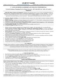 Executive Level Resume Samples by C Level Executive Resume Resume For Your Job Application