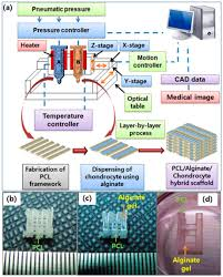 materials free full text 3d bioprinting technologies for hard