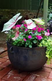 14 best flower pots images on pinterest flower pots home and