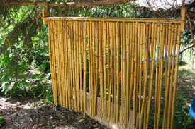 astonishing bamboo privacy screen pictures best image engine