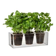 self water planter plant watering pot breathtaking decor plus images about container