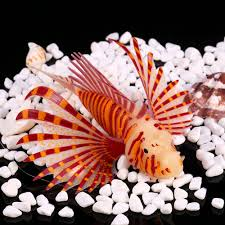 Home Aquarium Decorations Compare Prices On Fish Tank Decorations Online Shopping Buy Low