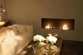 gas fireplace insert dealer napoleon installation instructions log er