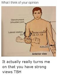 Meme Opinion - what think of your opinion glenohumeral shoulder joint medial