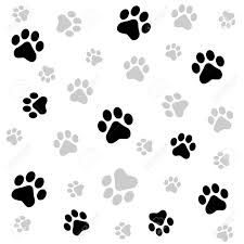 dog paw stock photos royalty free dog paw images and pictures