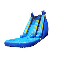Water Slides Backyard by Dolphin Bouncer Water Slide Bounce House Castle Castle House